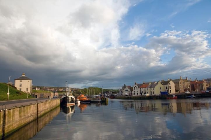 The Herring Queen - Eyemouth