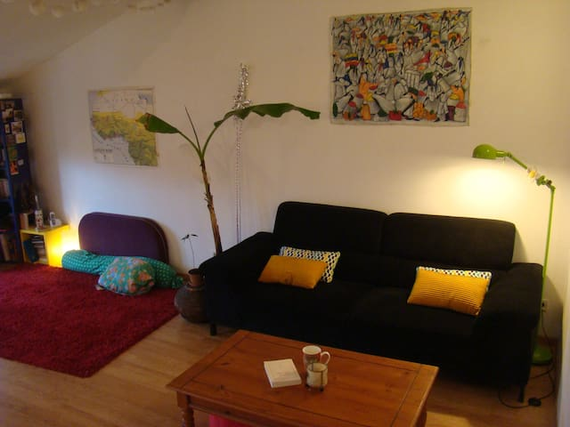 grand appartement plein centre - Limoux