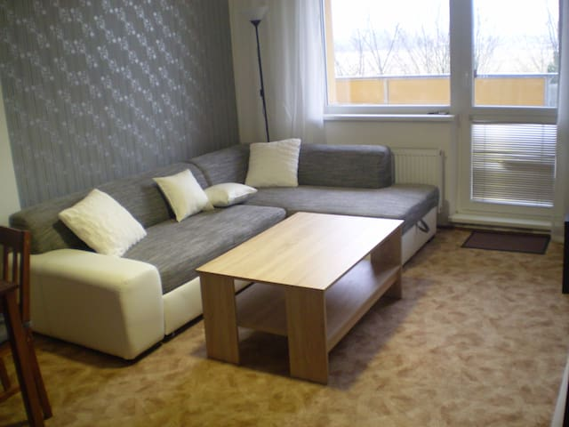 Two-room apartment with kitchenette - Velké Losiny - Wohnung