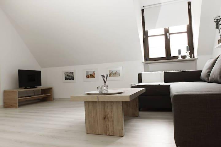Ferienwohnung 1 ANNA IFF - Würzburg - Würzburg - Apartmen