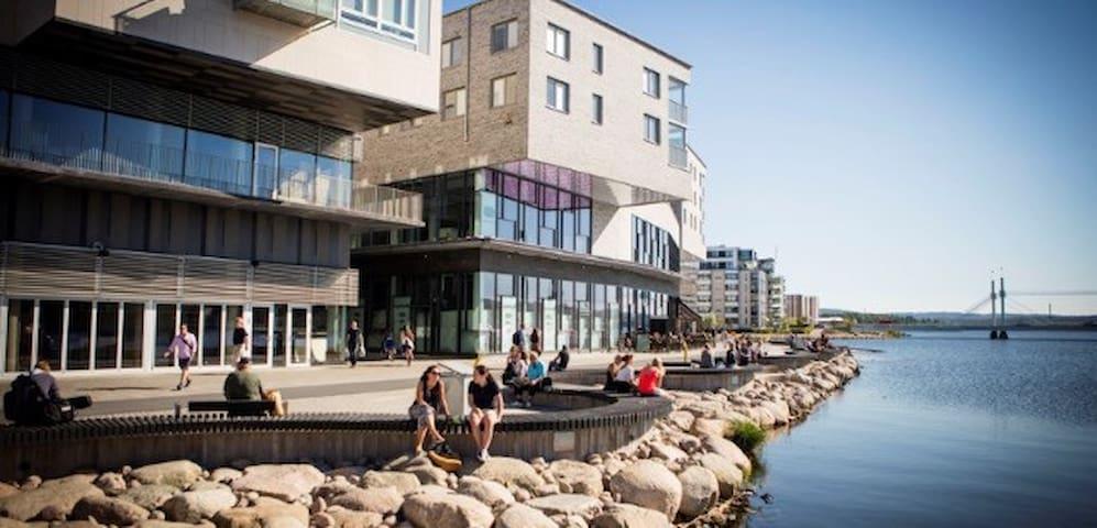 Central apartment with unique view - Jönköping