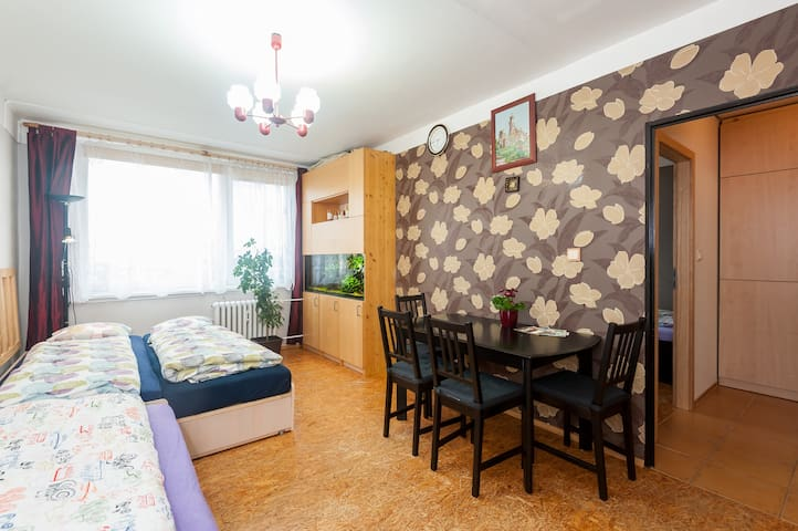 The flat on the 12th floor, near the airport. - Praag - Appartement