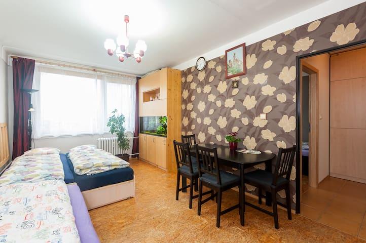 The flat on the 12th floor, near the airport. - Praga