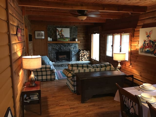 Cozy log cabin by Owasco Lake - Auburn - Hus
