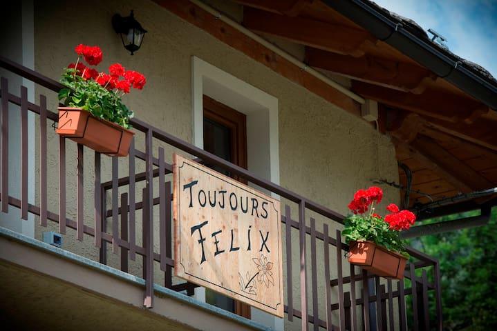 Toujours Felix      alloggio  - GRENIER - - Cerian-epaillon - Departamento
