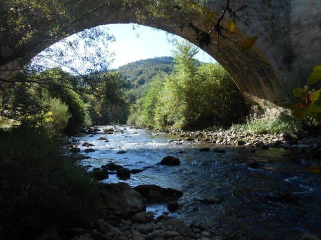 gîte Alet/Limoux 5ch  8/10pers grd calme rivière - Alet-les-Bains - Hus
