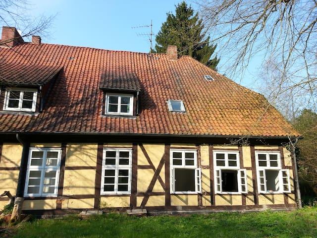 Dachzimmer mit Blick ins Grüne - Göhrde