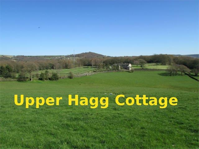 Upper Hagg Cottage - Thongsbridge - Dom