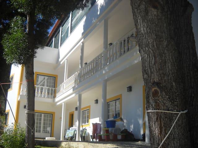 Quinta da Palmeira - Dream House - Azambuja - Hus