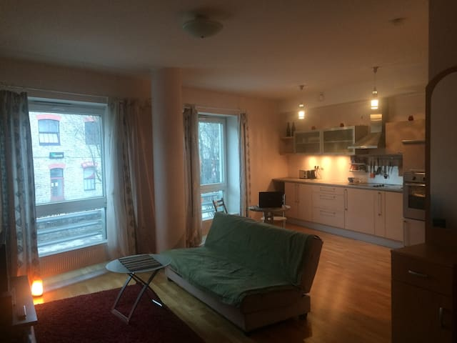 Comfortable flat near city center - Tallinn - Appartement
