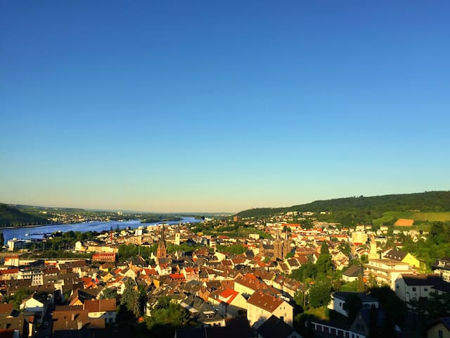 Large Panorama Apartment with Pool - Bingen am Rhein - 아파트