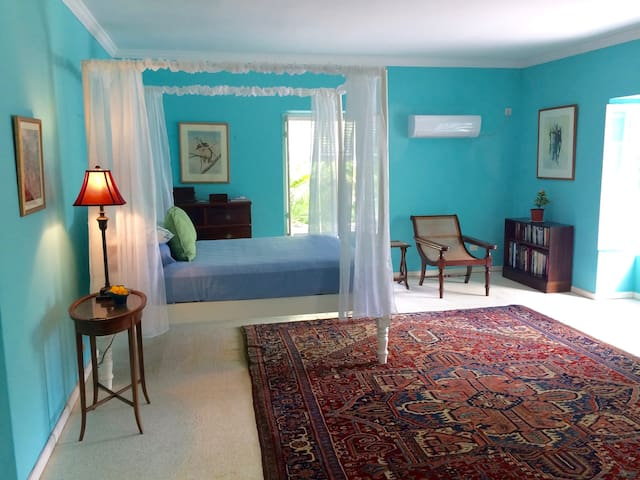 Colleton Great House Blue Room - BB - Konukevi