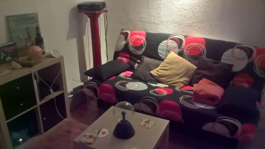 Chambre dans appartement de 80m² à Roanne centre - Roanne - Lägenhet
