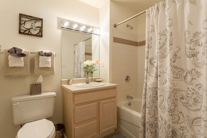 1 BR available in a 2 bdr apartment. - Raynham - Appartement