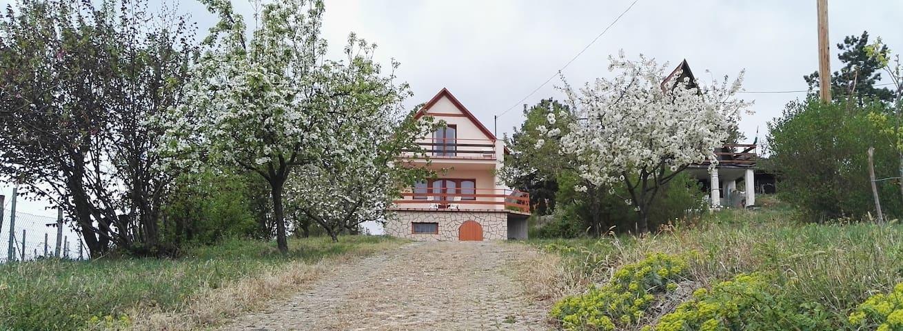 Panorama Guesthouse in Sukoró at Lake Velence - Sukoró - Pension