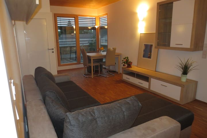 Bright apartment with rooftop terrace at the park - Erding - 公寓