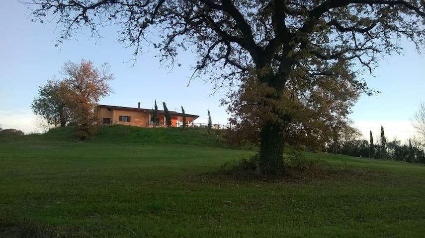 Villa  Cipressi - Saturnia - Villa