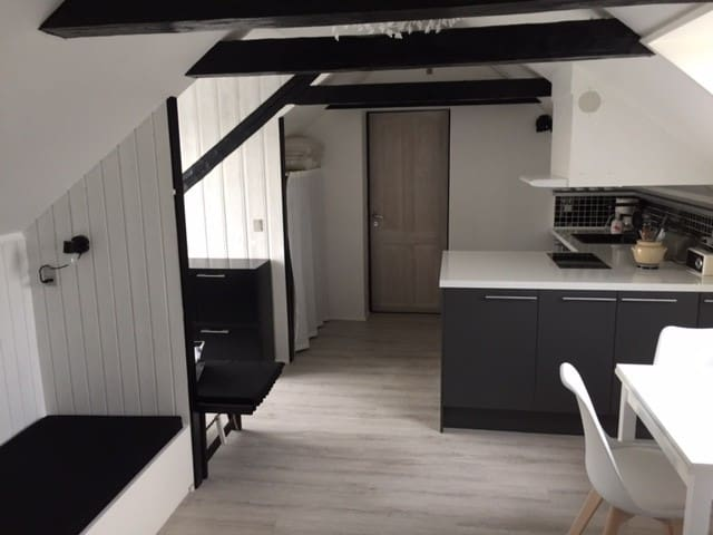Light and renovated apartment - Kastrup