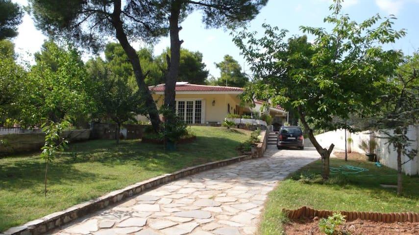 Spacious house with a large garden - Anixi - Casa cueva