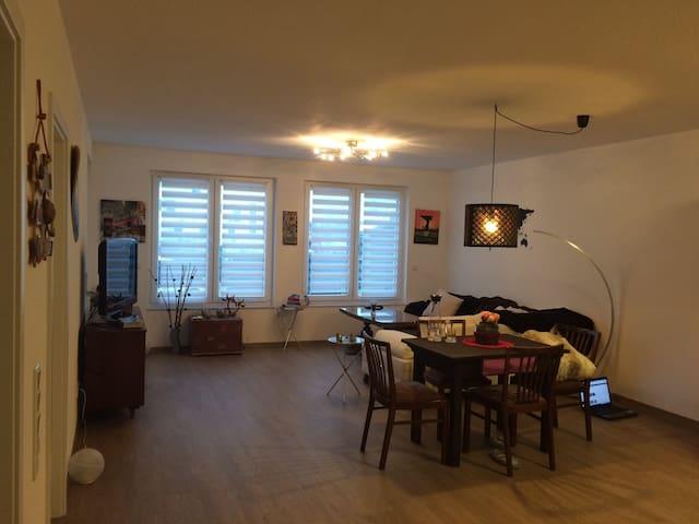 Nice flat near frankfurt airport - Mörfelden-Walldorf