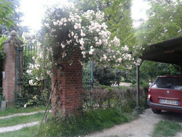 Dormire nel verde, a due passi dalla città - Castagneto po - Lägenhet
