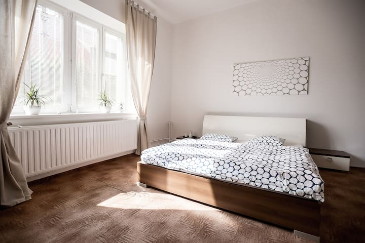 Two BIG Rooms Near OSTRAVA CENTER & BREAKFAST - Ostrava - Daire