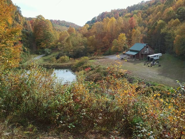 Cozy secluded cabin. Horse friendly - Layland
