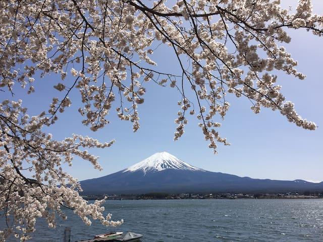Room with Scenic Beauty of Mt.Fuji1 - Fujikawaguchiko-machi - Apartamento