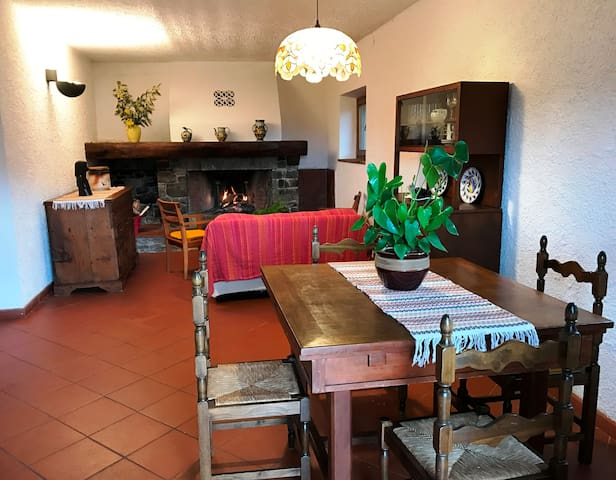 La Casa sul Colle, surrounded by Nature and Quiet. - Chifenti - Appartement