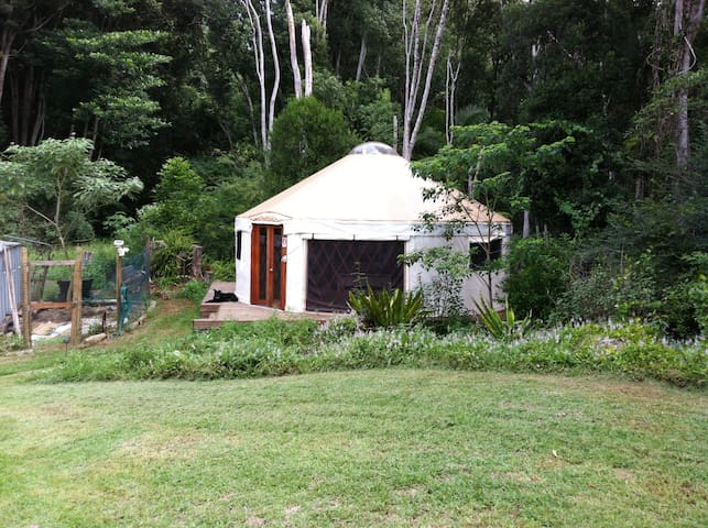 Yurt on Rainforest Retreat, Byron Hinterland - Goonengerry