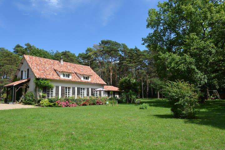 Le bois des Roches - Roches-Prémarie-Andillé - House