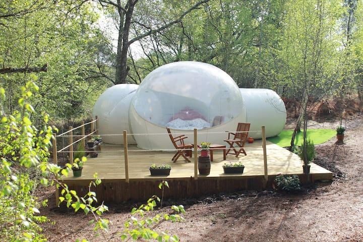 La bulle fleurie Au Pays des Bulles - Montendre - Andre