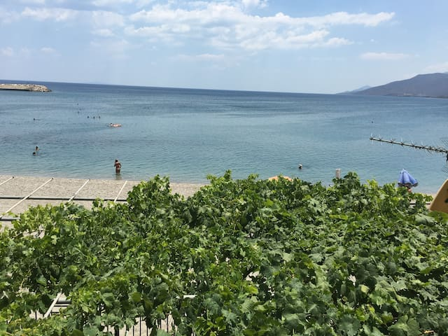 Rare Beachfront GEM w/ never-ending full sea view - Paralio Astros - Lägenhet