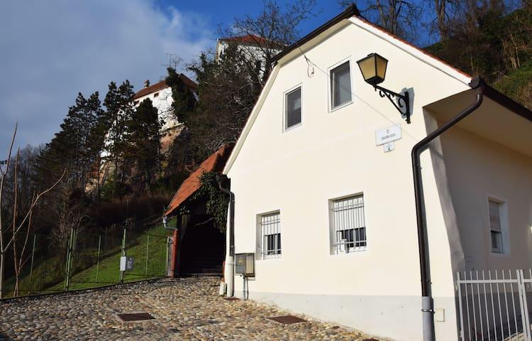 House in the city centre - Ptuj - House