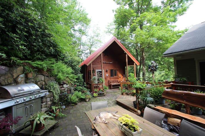 Cabin in the trees in historic Jim Thorpe... - Jim Thorpe