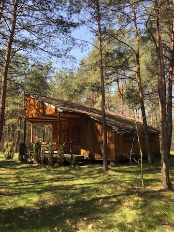 Country House in the forest - 1h from Warsaw - Maciejowice