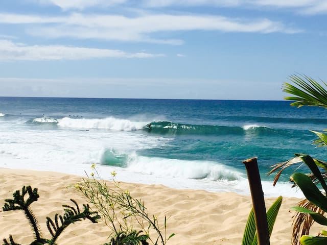 Jungle Surf Loft - Haleiwa - Huis