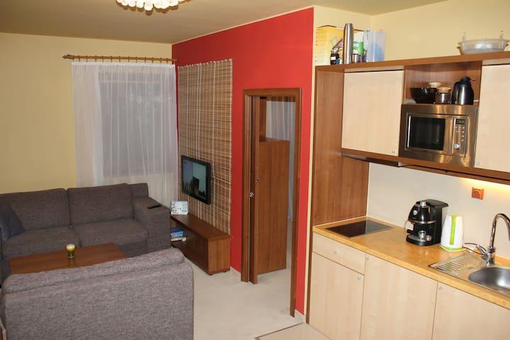 Luxus priamo pod Tatrami - Veľká Lomnica - Appartement