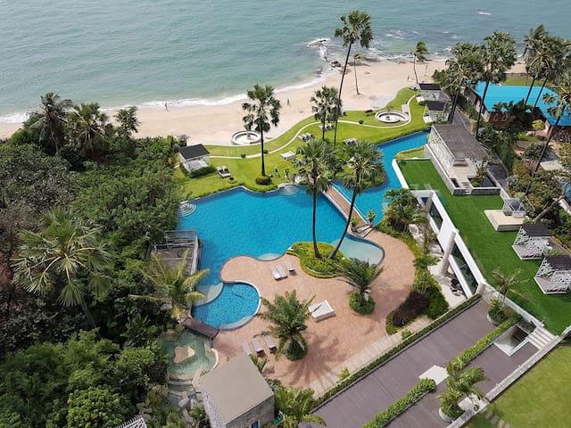 The Palm Wongamat Dream See View - Muang Pattaya - Apartament