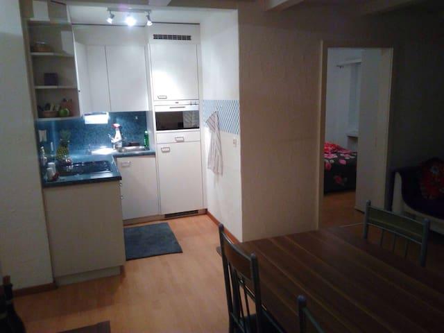 2 1/2 1/2 bedroom flat for holidays to rent.:) - Churwalden - Appartement