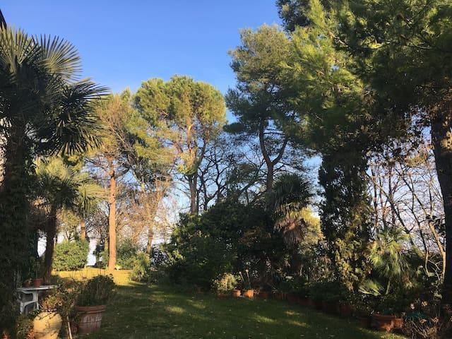 Monti House - セニガリア - 別荘