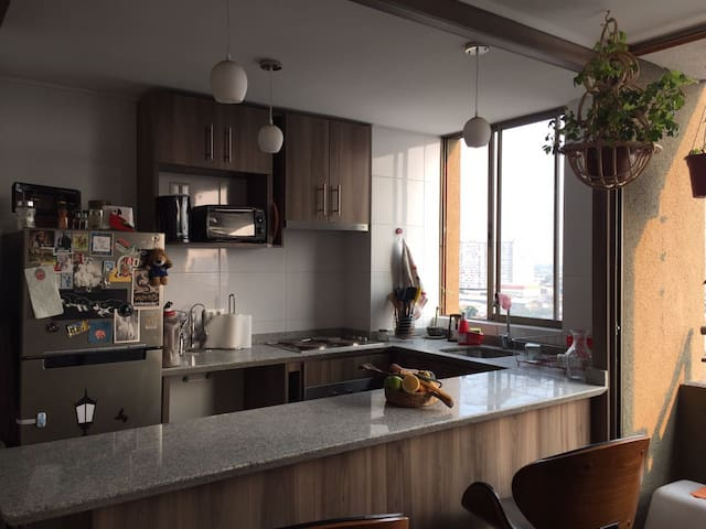Breakfast/Private room intercutural neighborhood - Santiago - Kondominium