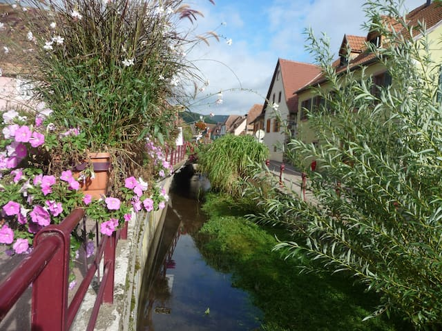 Take a break on the route de vin in Alsace - Soultzmatt - Apartamento