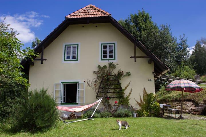 Altes Bauernhaus im Grünen - Puchegg - Huis