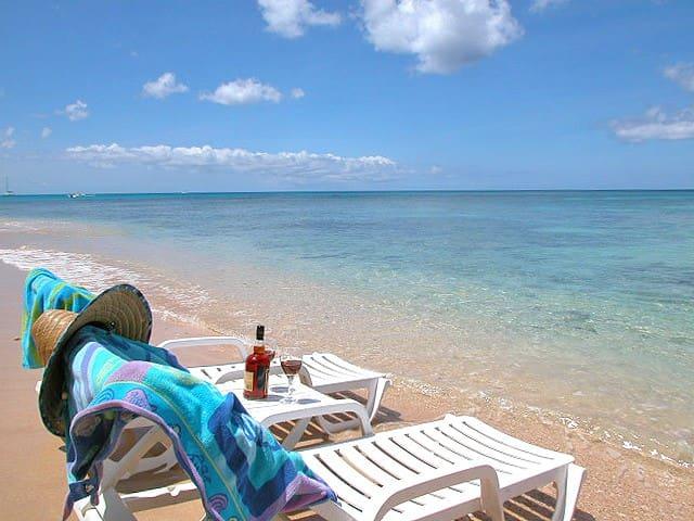 Beach Pavilion Apartment- 1 Bedroom Beachfront