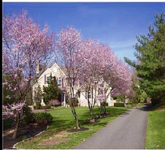 Luxury Vacation Family Estate - Pottstown - Casa