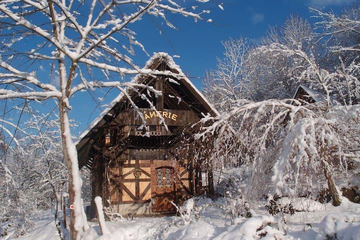 Gîte de l'Ânerie - Kirchberg - Домик на природе