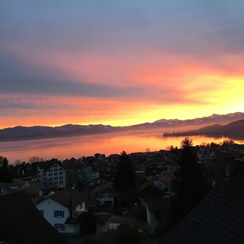 Amazing view over the lake of Zurich - Richterswil