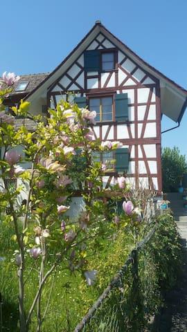 Romantisches Paradies am Rhein -  Eschenz - Rumah