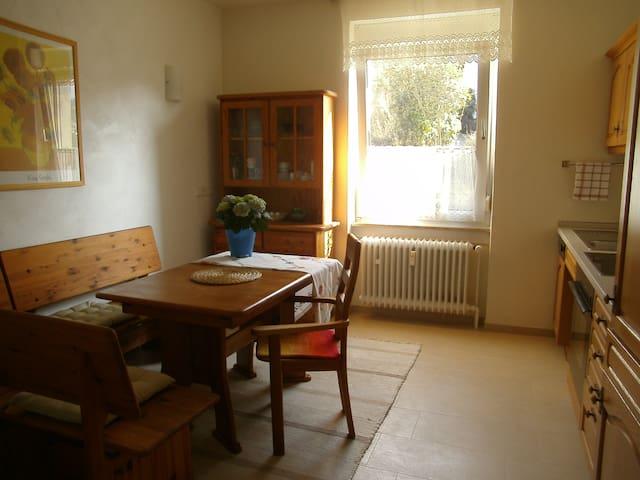 Schöne Wohnung mit Garten - Heidelberg - Lägenhet